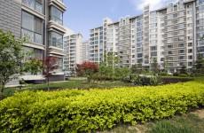Sprzątanie osiedli, obsługa wspólnot mieszkaniowych